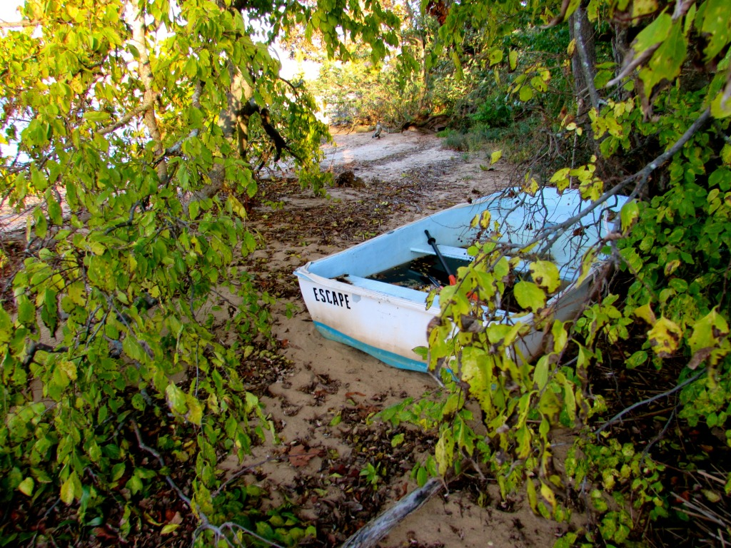Up a creek or river without a paddle? Where is this? Photo/Elaine Van Develde