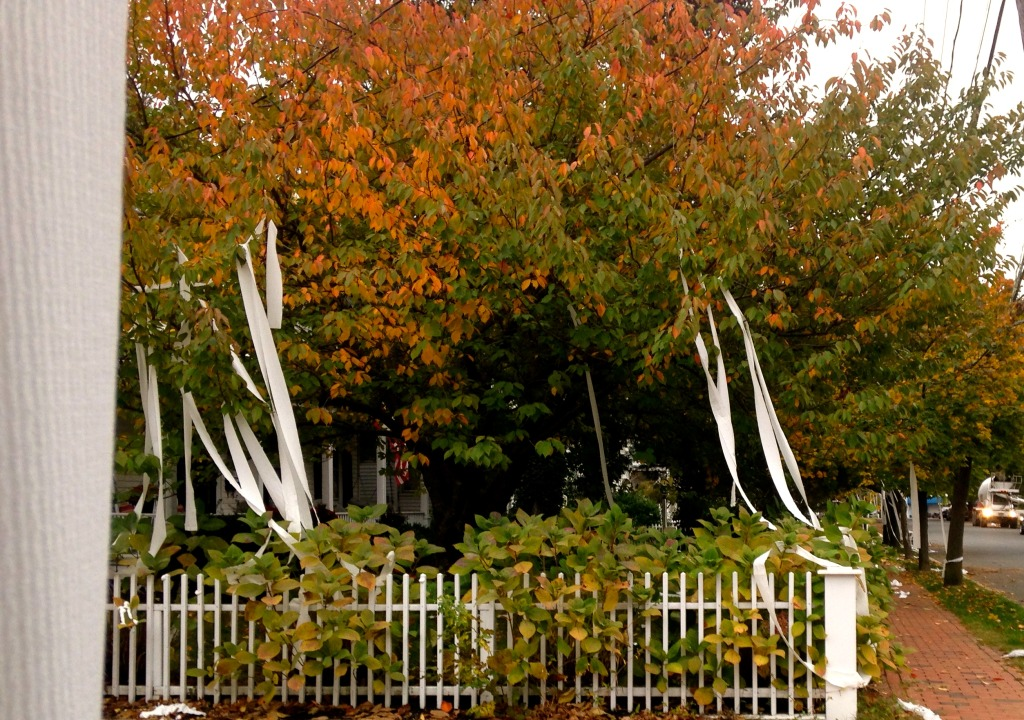 Mischief Night results on Fair Haven Road. Photo/Elaine Van Develde