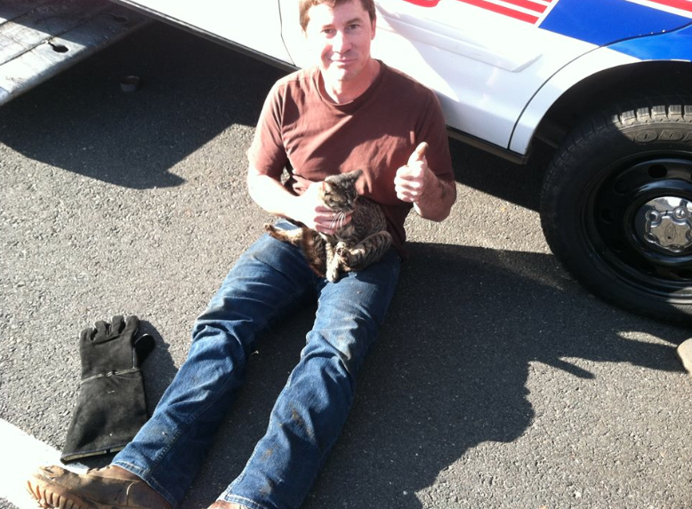 Cat rescued from highway median by Middletown police Photo/Middletown Police Facebook page screenshot