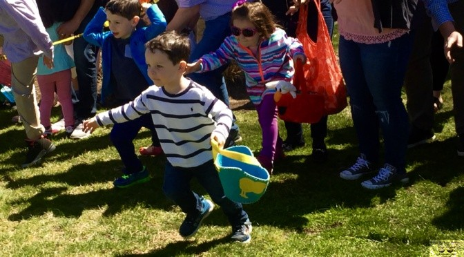 Focus: Hunting for Easter Eggs in Rumson
